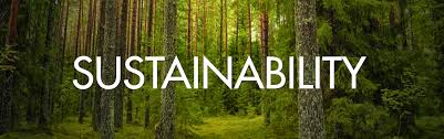 "Desperately in Need of the ""S"" in Sustainability"