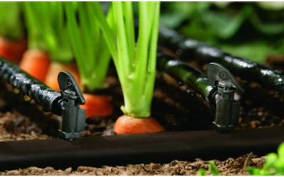 Focusing on Sustainable Irrigation: Looking Beyond Land and the Heavens