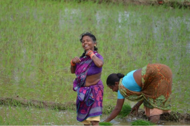 How AP's pivotal Rythu Bharosa scheme can benefit tenant farmers
